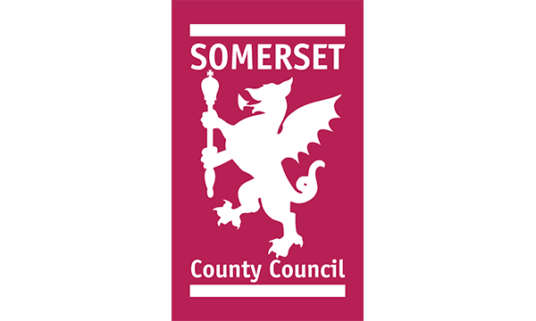 Somerset County Council's Live Chat Story