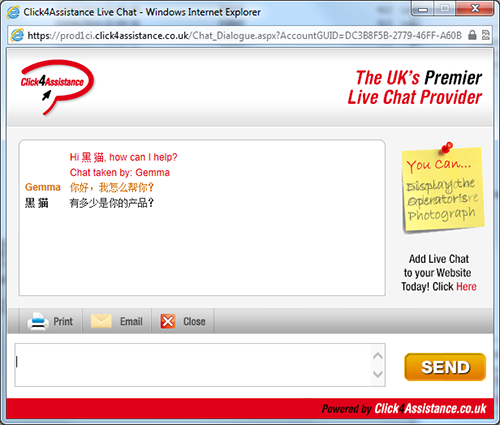 chat box for website supports multilingual visitors