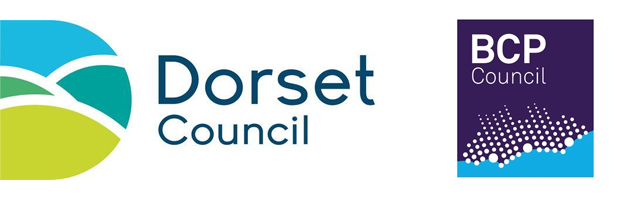 Dorset for You has gone through some changes and now use live chat software on their new council websites