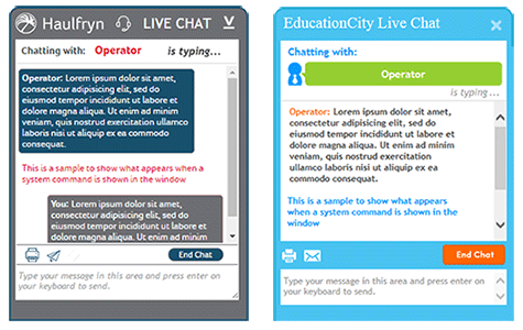 Best Live Chat Customer Embedded Window