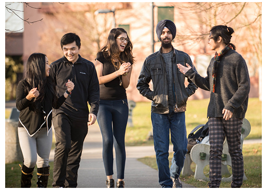 Add chat to website to converse with potential international students